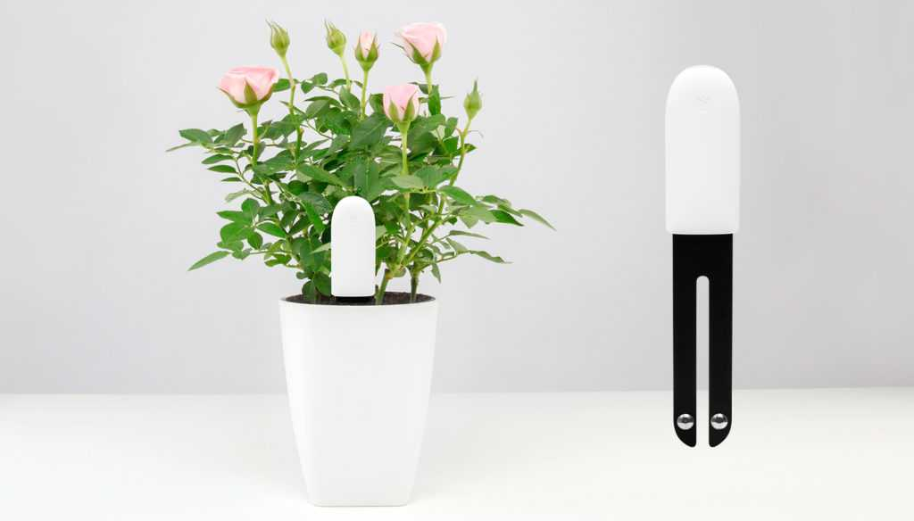 датчик растений
