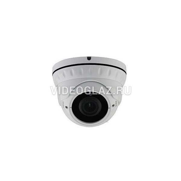 Видеокамера AltCam DDMV81IR