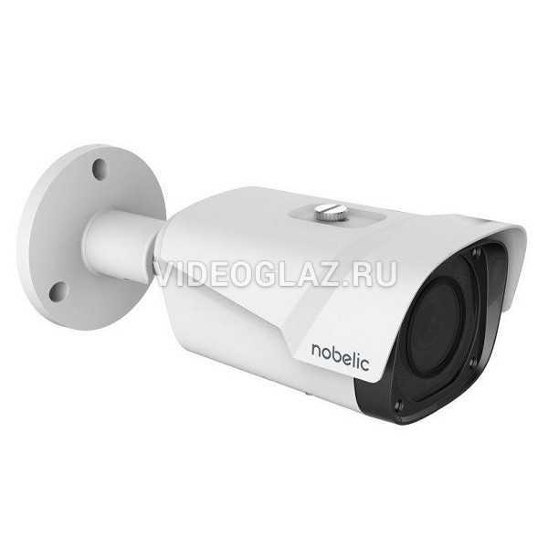 Видеокамера Nobelic NBLC-3261Z-SD с поддержкой Ivideon