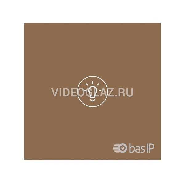 BAS-IP SH-73 золотой