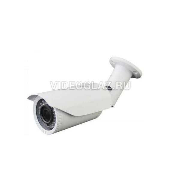 Видеокамера Master MR-IPNV102P2